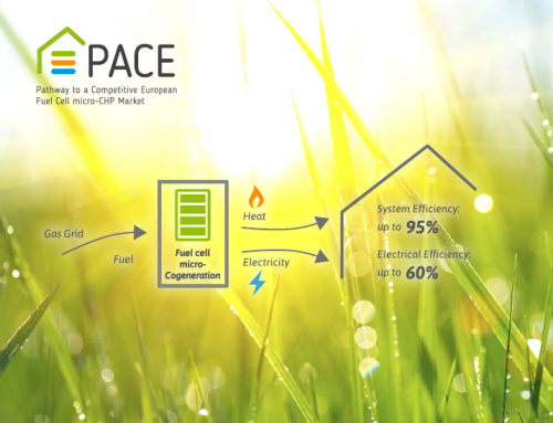 Follow PACE on Twitter @PACEmCHP