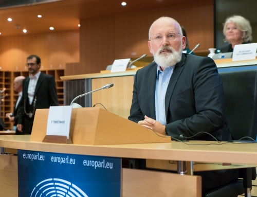 European Green Deal: Putting Europe's Building Stock on a Green Path?